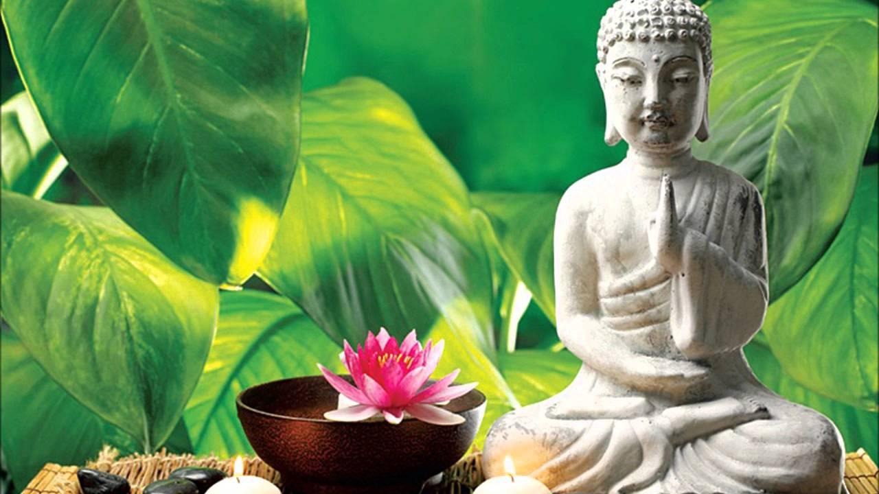 Thiền tập chánh niệm