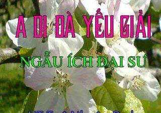 A Di Ðà Kinh yếu giải - Linh Phong Ngẫu Ích Trí Húc đại sư biên soạn