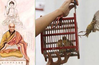 Khai thị về ăn chay, phóng sanh, niệm Phật và dứt trừ nghiệp sát hại của Ấn Quang đại sư