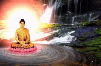 Phật dạy người phải hoàn toàn đoạn dứt thị hiếu ưa thích