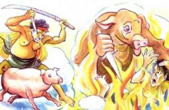 Giết hại quá nhiều lợn bị biến thành lợn
