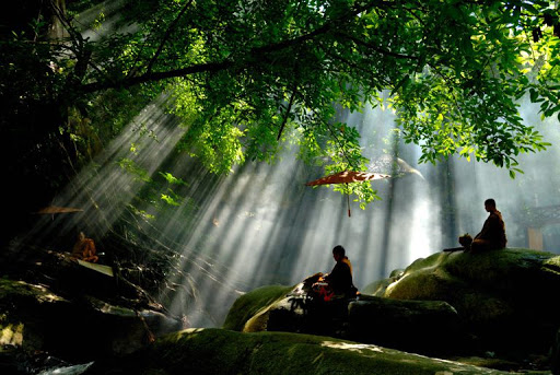 Sự tương quan giữa đạo Phật và môi trường