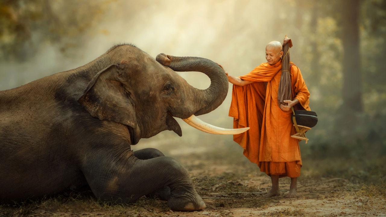 Tất cả chúng sanh đều có Phật tánh