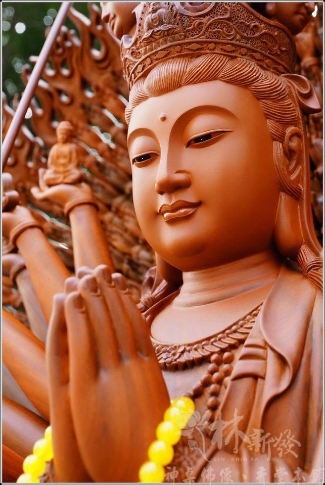 Chư Phật, Bồ Tát hết sức từ bi cũng không thể thay ta chịu tội báo