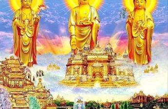 Đến thế giới cực lạc hưởng phước của A Di Đà Phật