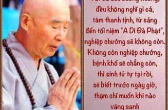 HT Tịnh Không: Niệm A Di Đà Phật Tiêu Nghiệp Tội Và Phước Báu Không Thể Nghĩ Bàn