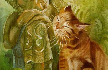 """5 cái """"Đừng"""" của người Trí - Đức Phật và chú mèo"""