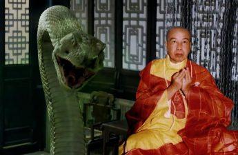 Hòa thượng Thiền Tâm và những con rắn thành tinh