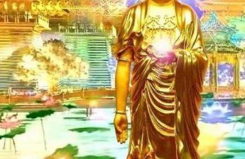 A Mi Đà Phật - Tâm lượng lớn thì phước báo lớn; chịu thiệt là phước, bị lừa là trí huệ!
